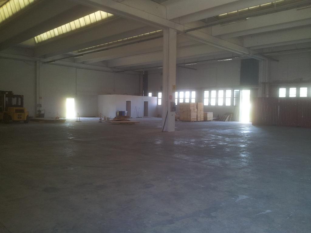 Laboratorio in Affitto a Pisa