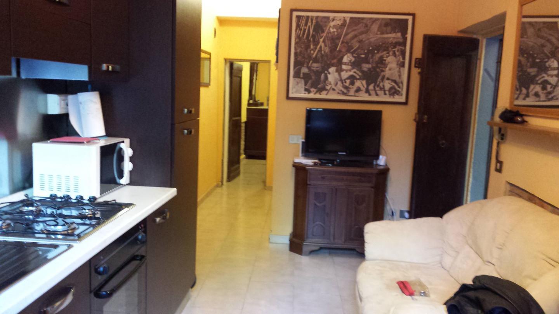Appartamento affitto Pisa (PI) - 2 LOCALI - 50 MQ