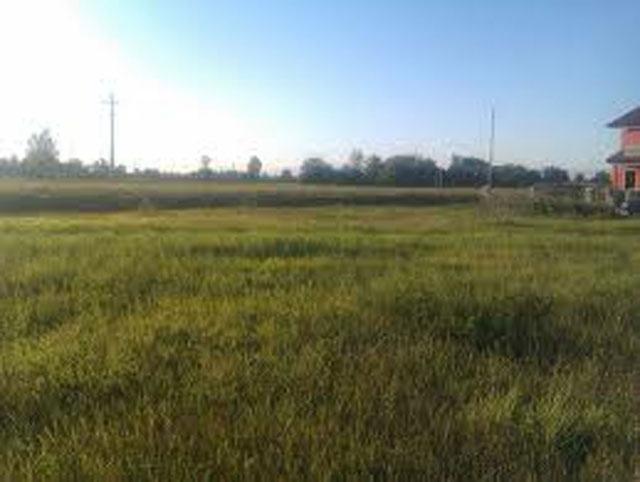 Terreno Agricolo in vendita a Salgareda, 9999 locali, Trattative riservate | Cambio Casa.it