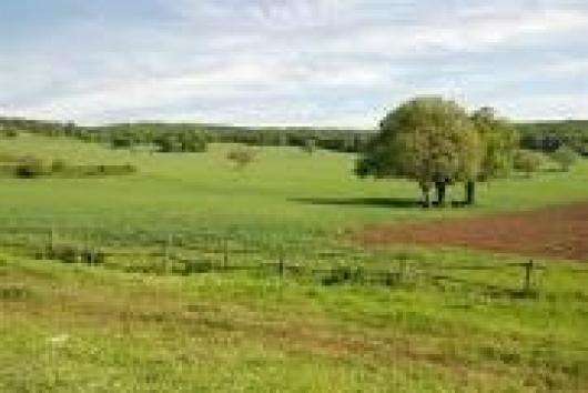 Terreno Agricolo in vendita a San Clemente, 9999 locali, prezzo € 165.000 | Cambio Casa.it