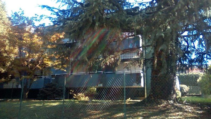 Appartamento in vendita a Bregnano (CO)