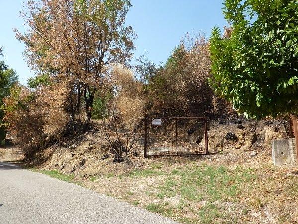 Terreno vendita SCANDRIGLIA (RI) - 99 LOCALI - 1740 MQ