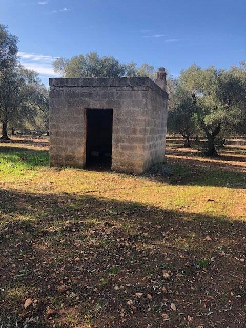 Terreno agricolo in vendita a Francavilla Fontana (BR)