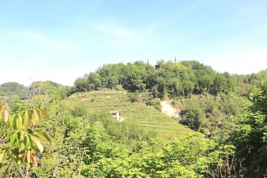 Terreno Agricolo in vendita a Pieve di Soligo, 5 locali, Trattative riservate | CambioCasa.it