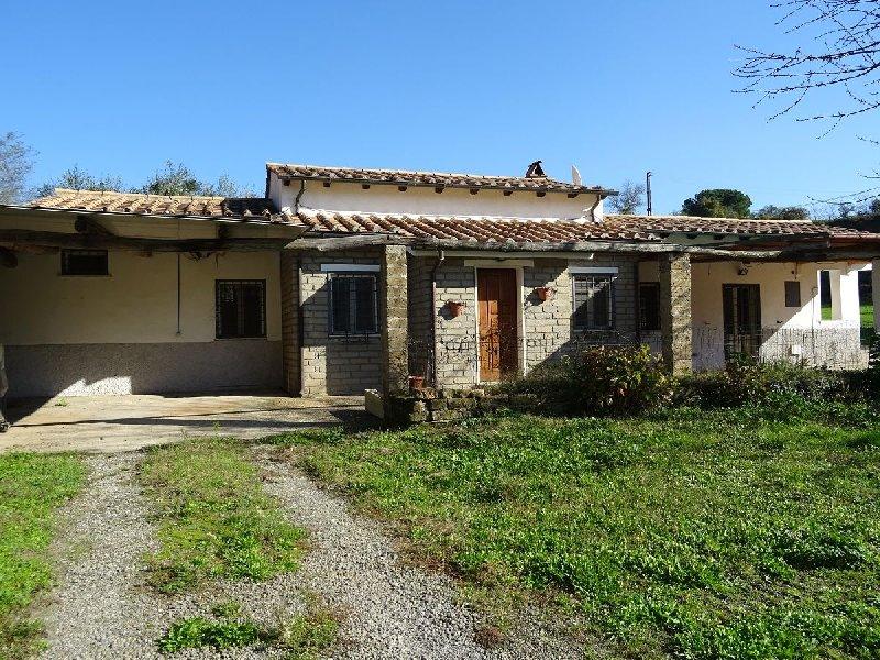 Soluzione Indipendente in affitto a Manziana, 2 locali, prezzo € 500   CambioCasa.it